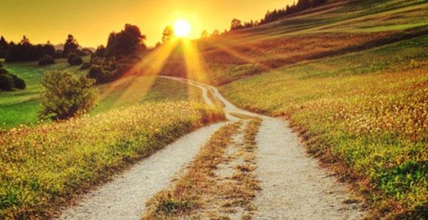 le chemin du mieux être